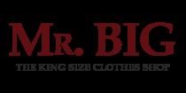 Mr. Big logo